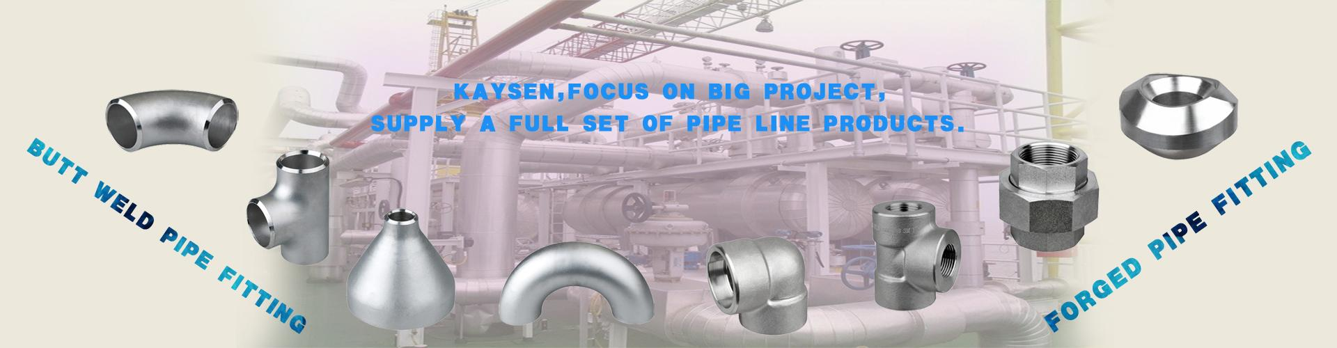 Forged Pipe Fittings Butt Welding Pipe Fittings